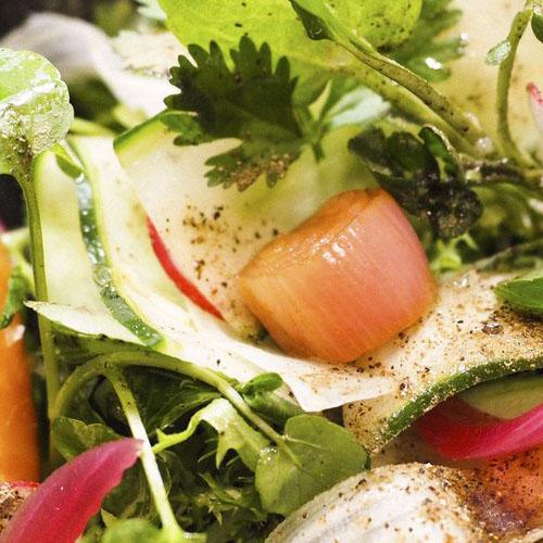 Ensalada Salvaje ensalada-salvaje